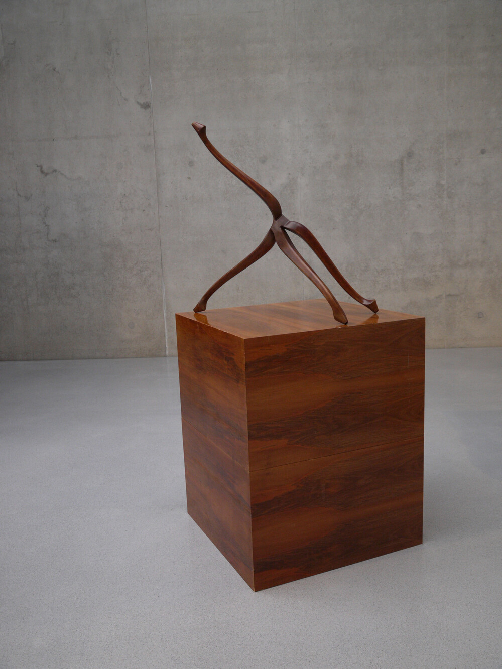 Markus Schinwald - © Galerie des Galeries
